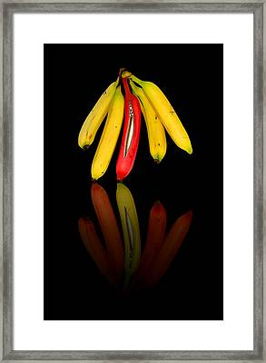 Bananas Framed Print by Svetlana Sewell