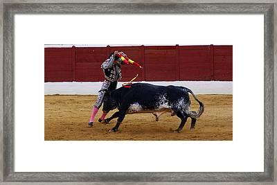 Banderillo Framed Print by Dave Dos Santos