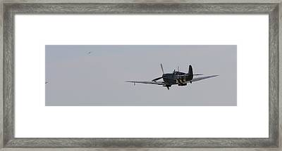 Bandits Sighted Framed Print by Robert Phelan