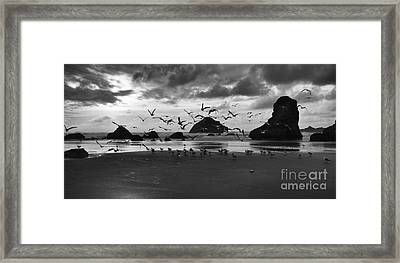Bandon By The Sea Taking Flight Framed Print by Bob Christopher