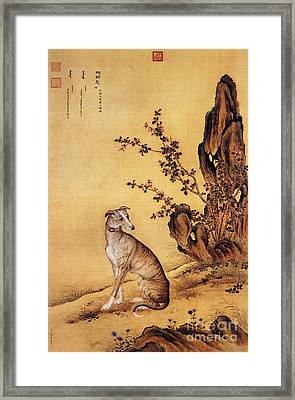 Banjinbiao - Chinese Royal Dog Framed Print by Pg Reproductions