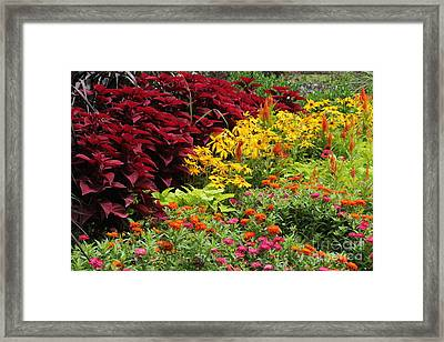 Banked With Beauty Framed Print