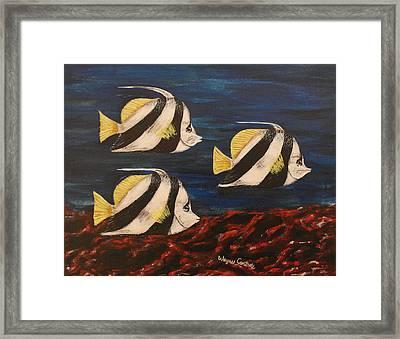 Bannerfish Framed Print by Wayne Cantrell