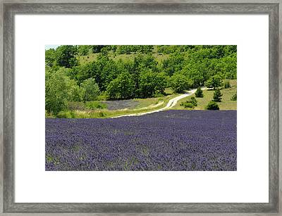 Banon, Provence, France Framed Print by Sergio Pitamitz