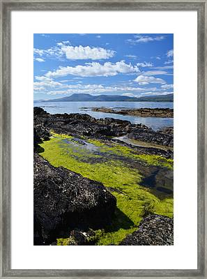 Bantry Bay In August Framed Print