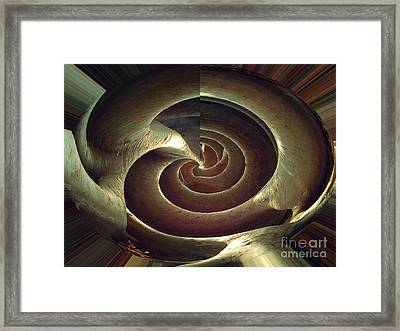 Banyan Root Shell Abstract Framed Print by Ann Johndro-Collins