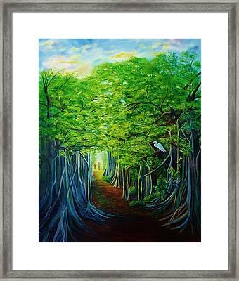 Banyan Walk Framed Print