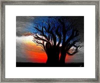Baobab Tree 2 Framed Print
