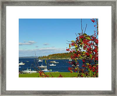 Framed Print featuring the photograph Bar Harbor by Gene Cyr