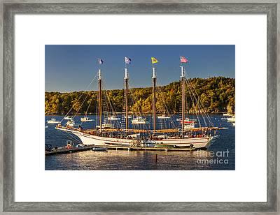 Bar Harbor Schooner Framed Print by Brian Jannsen