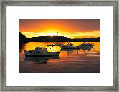 Bar Harbor Sunrise Framed Print by Bernard Chen