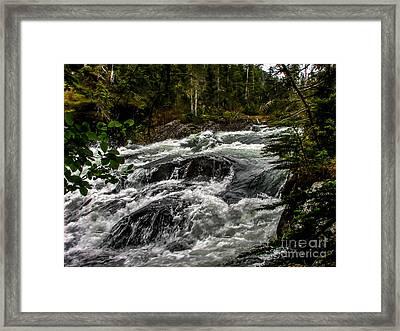 Baranof River Framed Print by Robert Bales