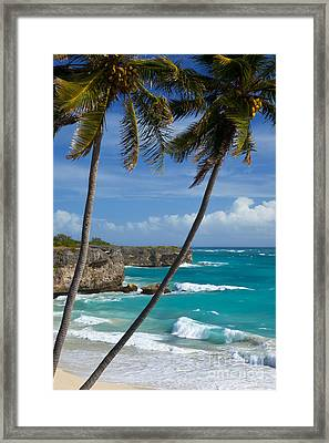 Barbados Framed Print by Brian Jannsen