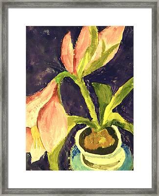 Barbara's Lily Framed Print by Valerie Lynch