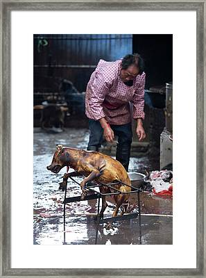 Barbecued Dog Carcass In A Chinese Market Framed Print by Tony Camacho
