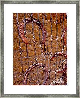 Barbed  Framed Print by Cathy Dee Janes