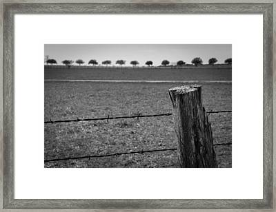 Barbed Horizon Framed Print