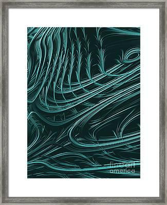 Barbed Framed Print by John Edwards
