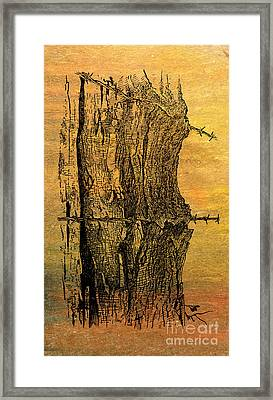 Barbed Life Framed Print by R Kyllo