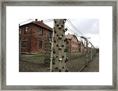 Framed Print featuring the photograph Barbed by Steve Godleski