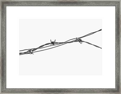 Barbed Wire Framed Print by Fran Riley