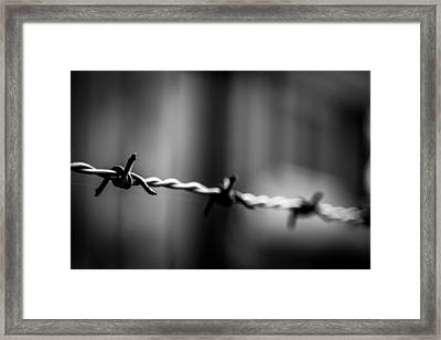 Barbed Wire Framed Print by Gary Fossaceca