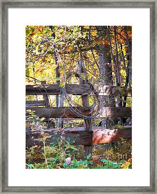 Barbed Wire On Fence Framed Print by Linda Marcille