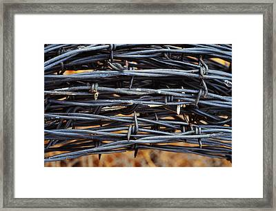 Barbs Wound Tight Framed Print by Kae Cheatham