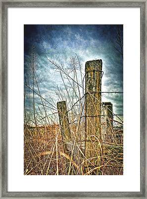 Barbwire Fences Framed Print