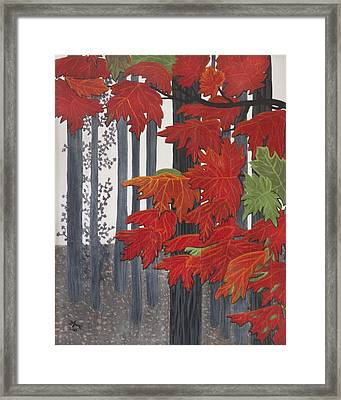 Barcode Framed Print by BJ Hilton Hitchcock
