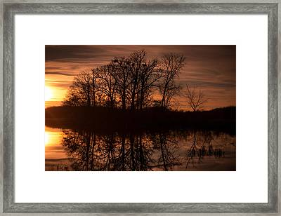 Framed Print featuring the photograph Bare Beauty by Jason Naudi Photography
