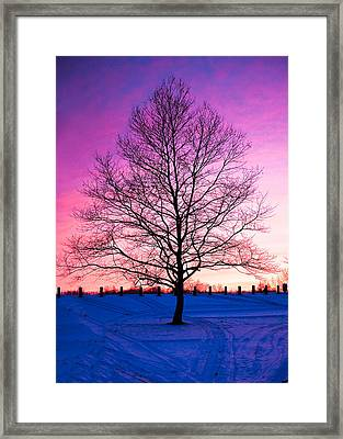 Bare Beauty Framed Print