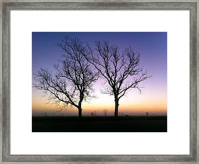 Framed Print featuring the photograph Bare Bones by Tim Stanley