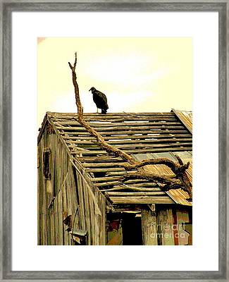 Bare Pantry Framed Print by Joe Jake Pratt