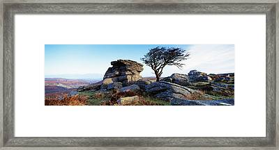 Bare Tree Near Rocks, Haytor Rocks Framed Print