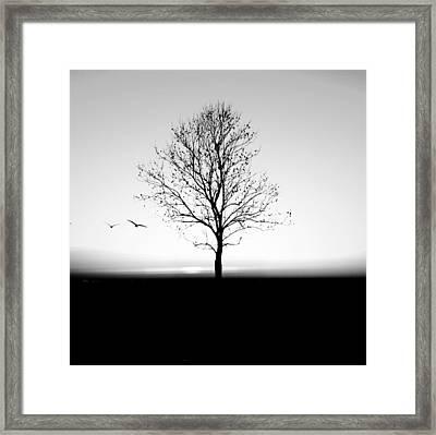 Bare Tree On Silhouette Field Against Framed Print by Marc Stapel / Eyeem