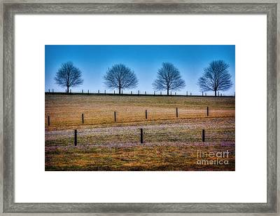 Bare Trees And Fence Posts Framed Print