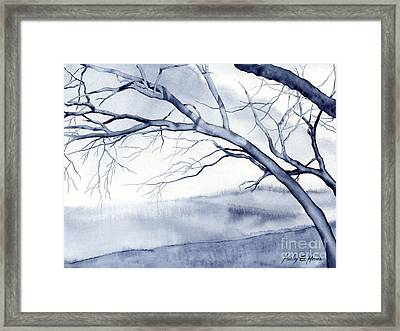 Bare Trees Framed Print by Hailey E Herrera