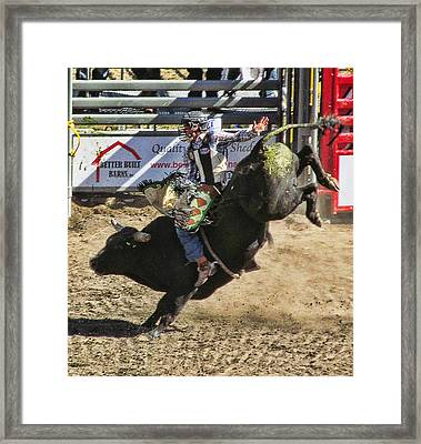 Bareback Bull Riding Framed Print by Ron Roberts