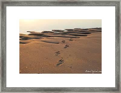 Framed Print featuring the photograph Barefoot In Sand by Robert Banach