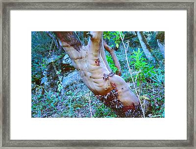 Barely Here Framed Print by Marie Neder