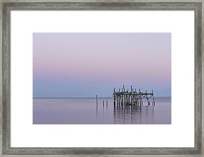 Barely Standing Framed Print by Jon Glaser