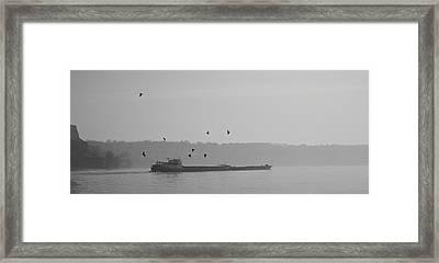 Barges Sail Birds Fly Framed Print