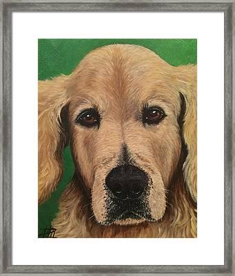 Barkley Framed Print