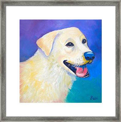 Barkley Framed Print by Debi Starr
