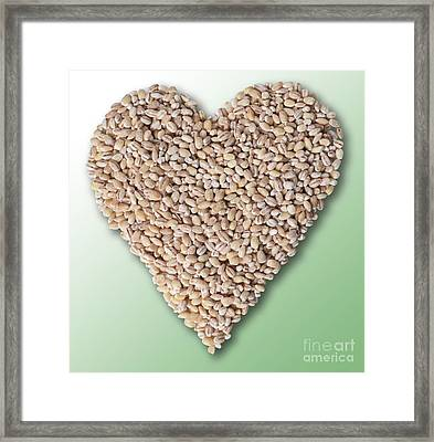 Barley Heart Framed Print by Gwen Shockey