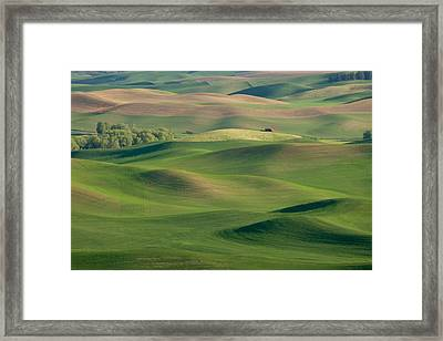 Barn Among The Contours Framed Print by Mary Lee Dereske