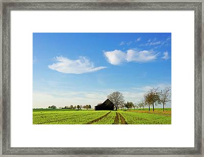 Barn And Green Agricultural Field Framed Print by Panoramic Images