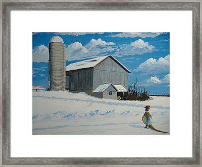 Barn And Pheasant Framed Print by Norm Starks