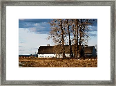 Barn And Trees Framed Print